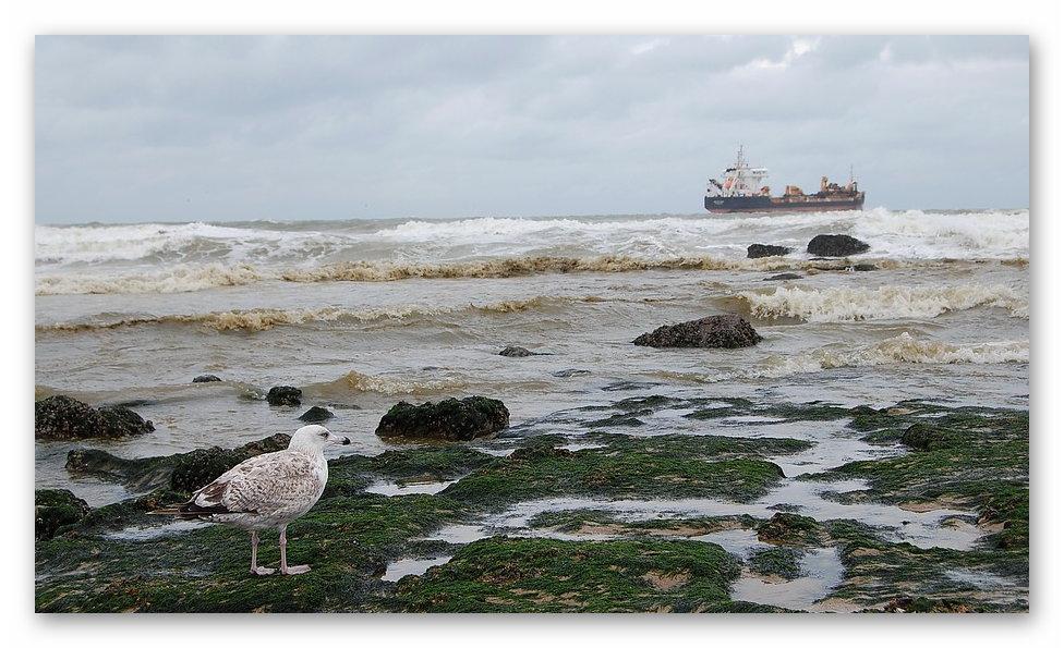 Otterndorf an der Nordsee lockt auch im Herbst mit viel Erholung